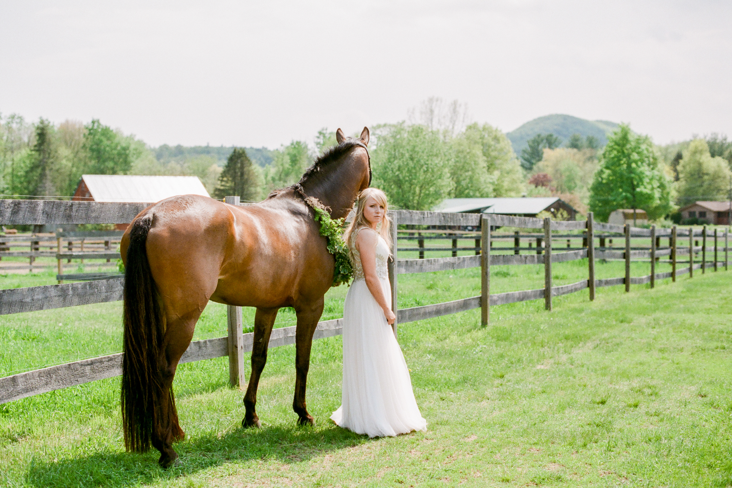 Equestrian Portrait Photographers in Amherst MA