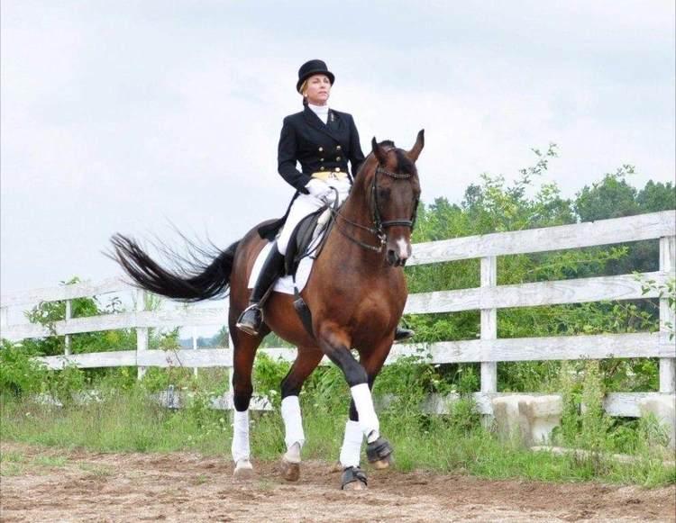 prancing-horse.jpg