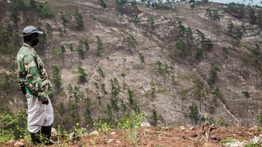Haitian deforestation in   Death by a Thousand Cuts.