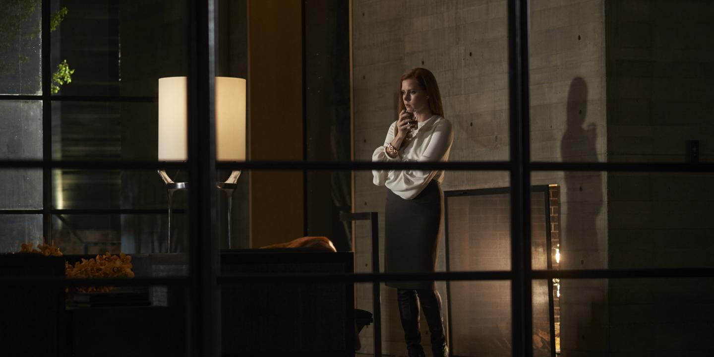 The shadow of the past: Susan's (Amy Adam)life is thrown into turmoil by an unexpected letter from her former husband.
