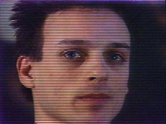 Reverse Big Brother  (Paul Garrin, 1990)