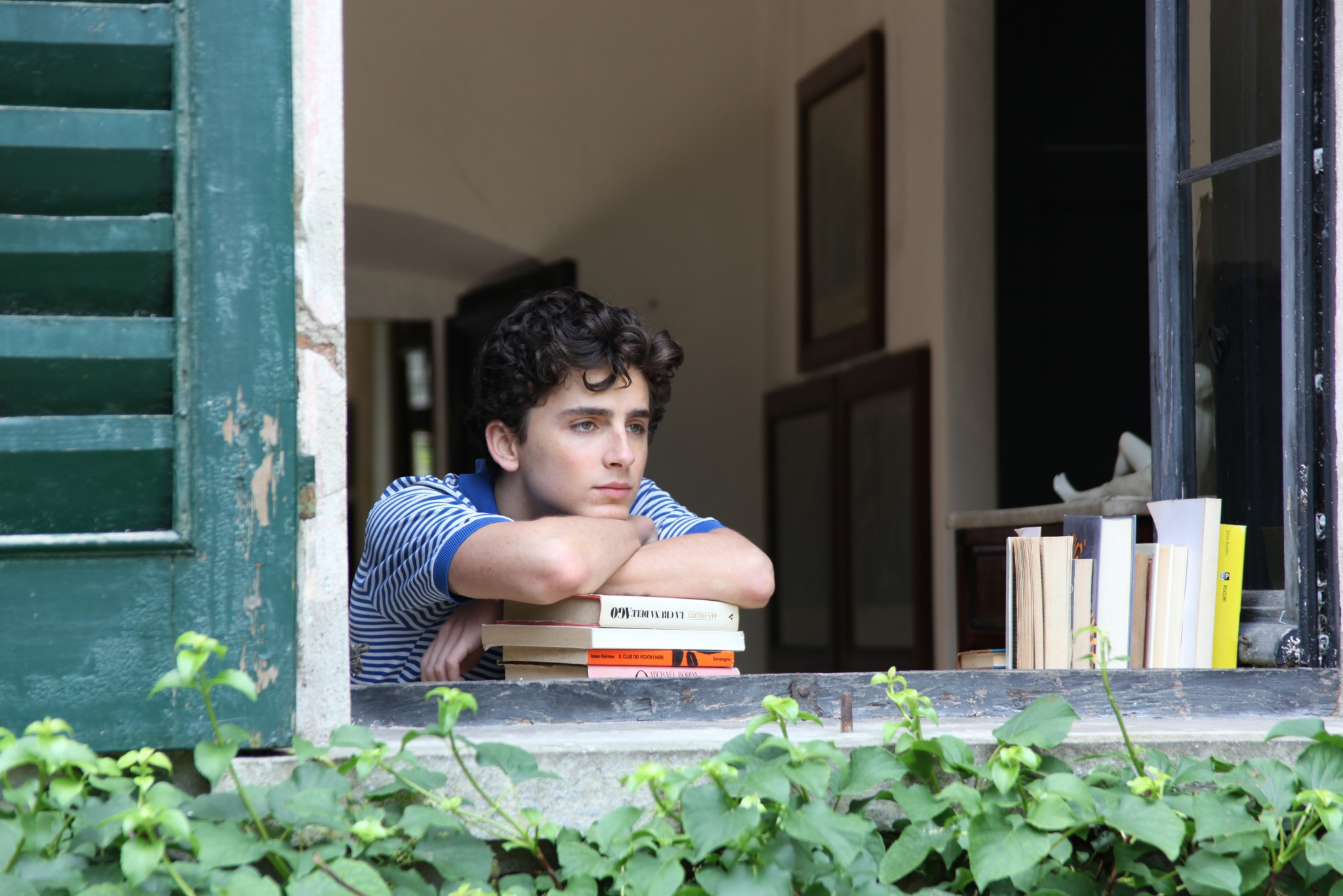 Seventeen-year-old Elio (Timothée Chalamet) is in the process of exploring his sexual identity.