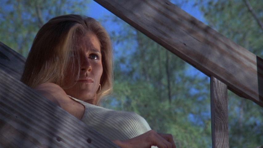 Jennifer Warren plays Paula, a possible love interest of Harry's.