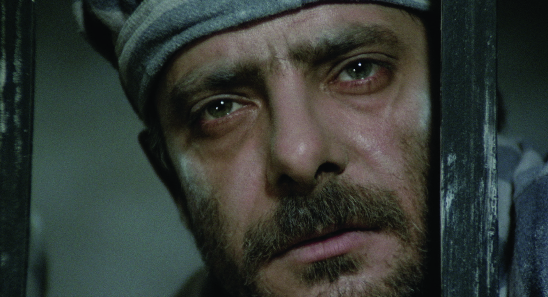Pasqualino (Giancarlo Giannini) stares into the abyss in  Seven Beauties  and returns to suppress the tale.