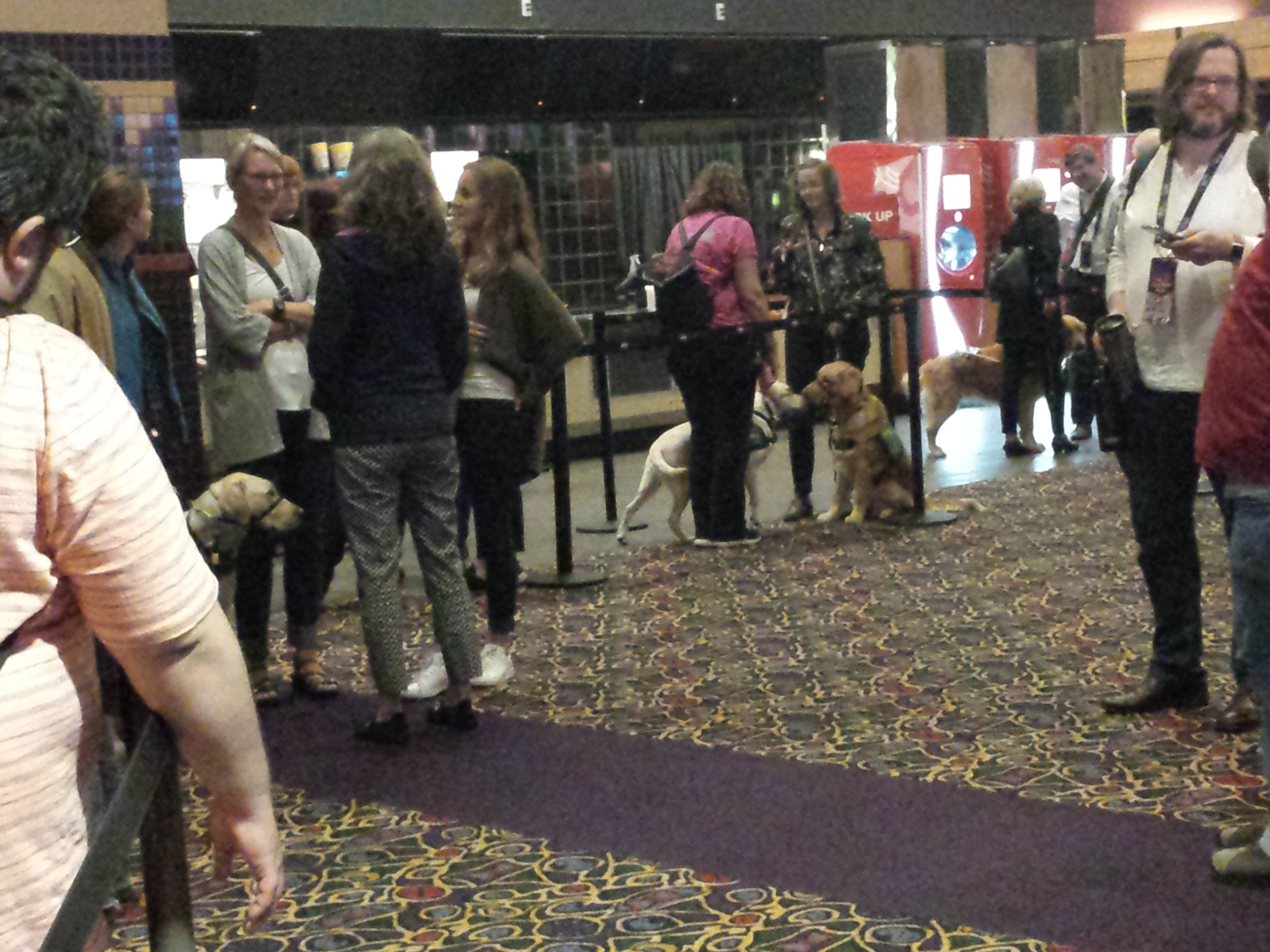 Service dogs, trainers, and festival attendees mingle before a screening of  Pick of the Litter.