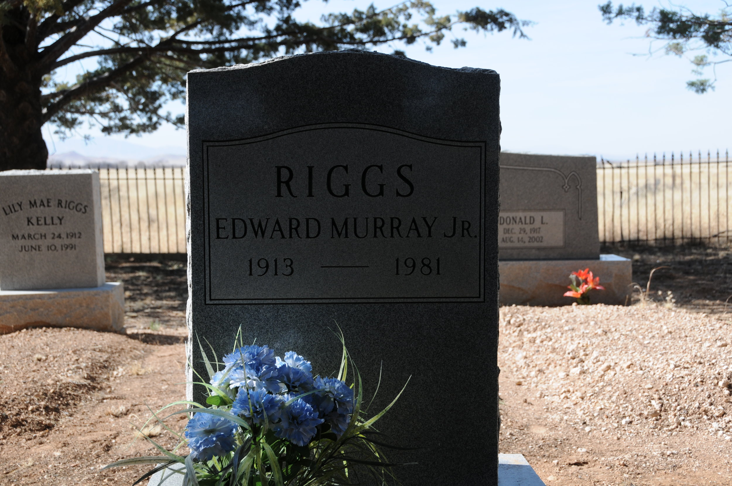 6b EDWARD MURRAY RIGGS JR.