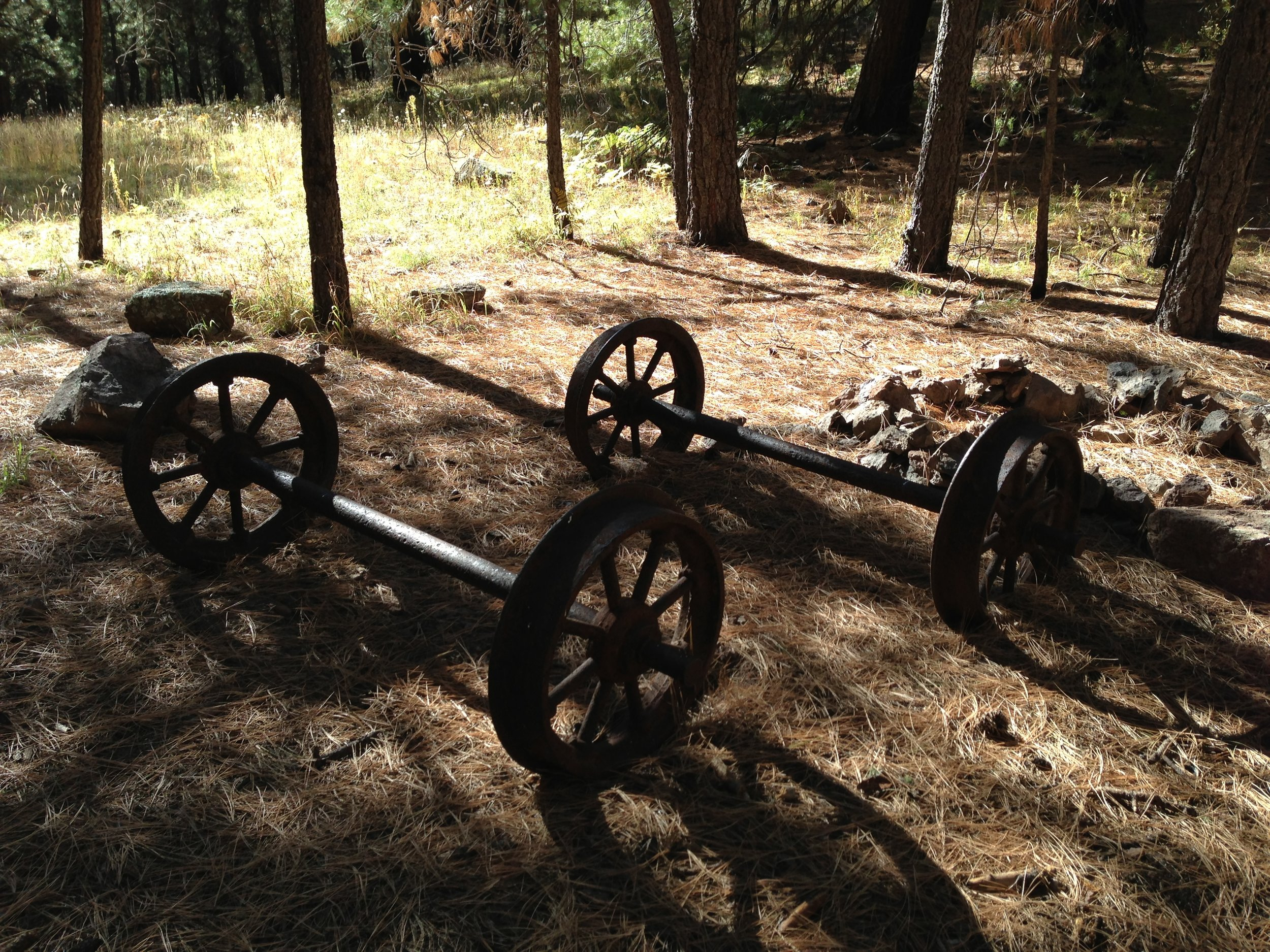 PHOTOGRAPH TAKEN IN SEPTEMBER 2012 OF THE REMAINING PIECES OF EQUIPMENT AT THE SAWMILL