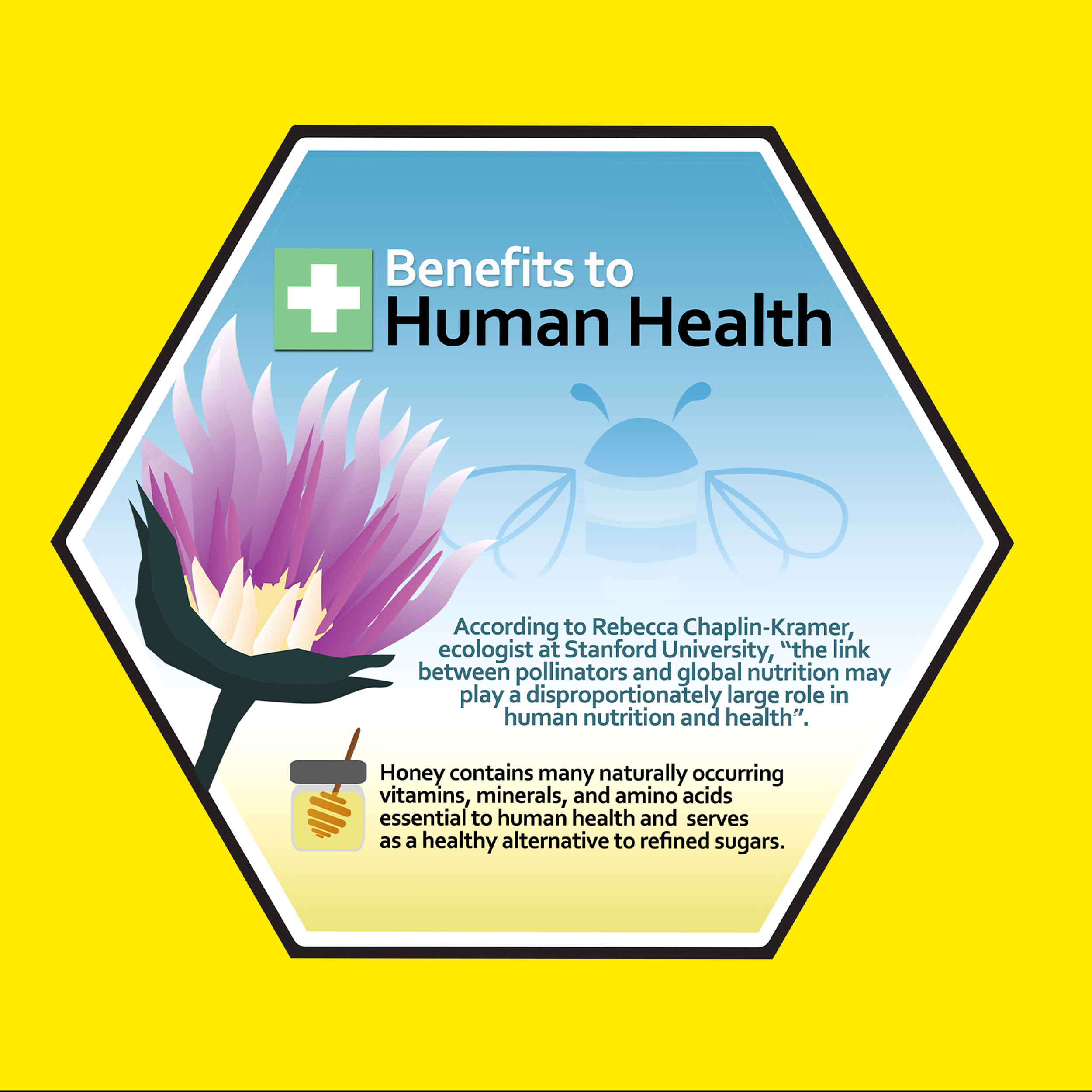 Bee Kind Spread 12.jpg
