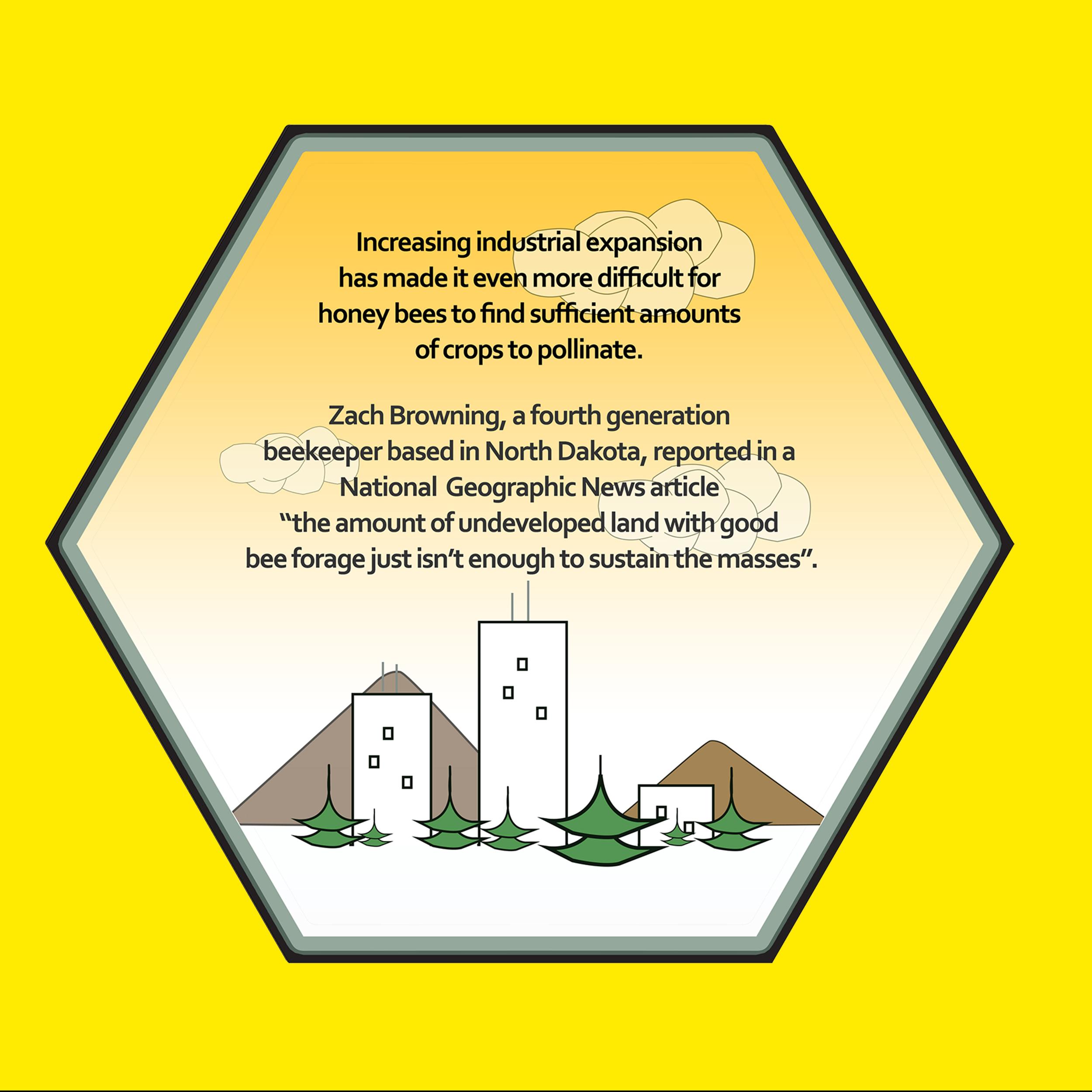 Bee Kind Spread 5.jpg