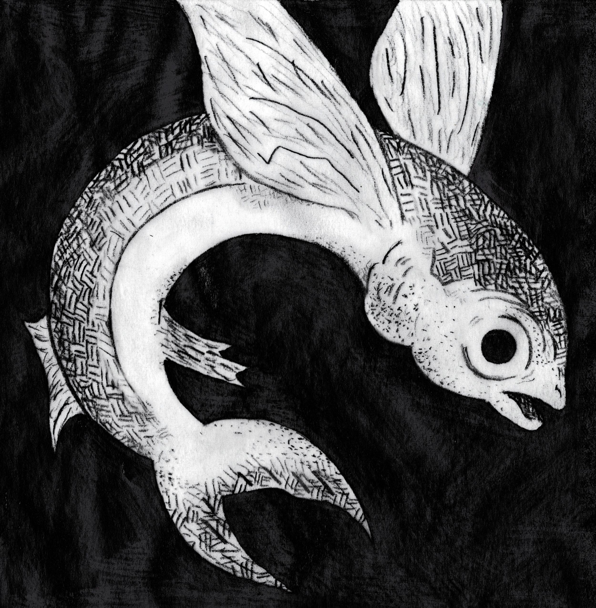 flying fish darker_opacity.jpg
