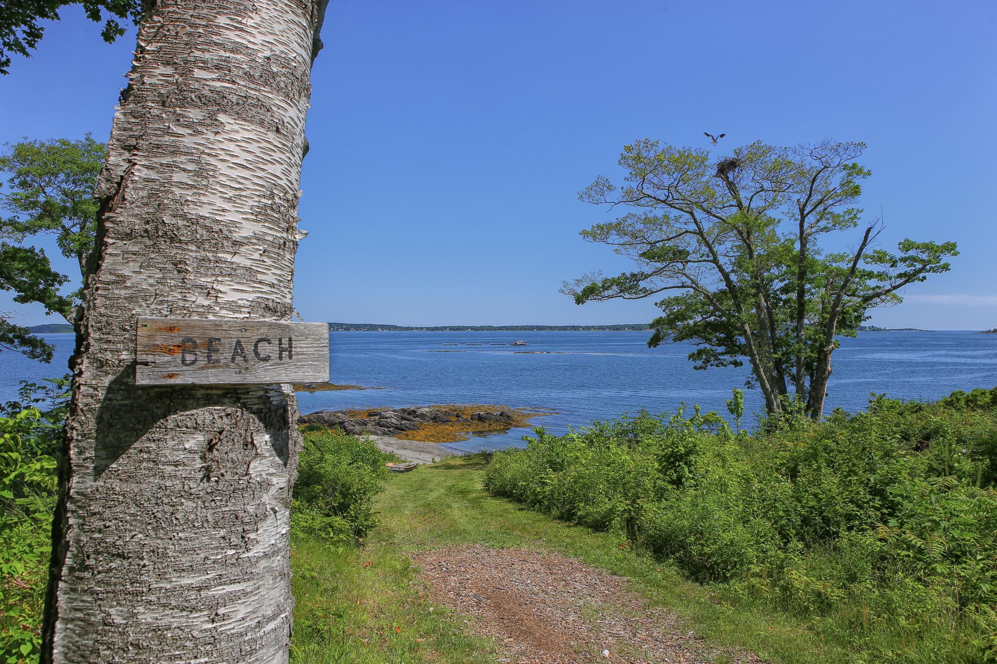 clapboard_beach_osprey.jpg