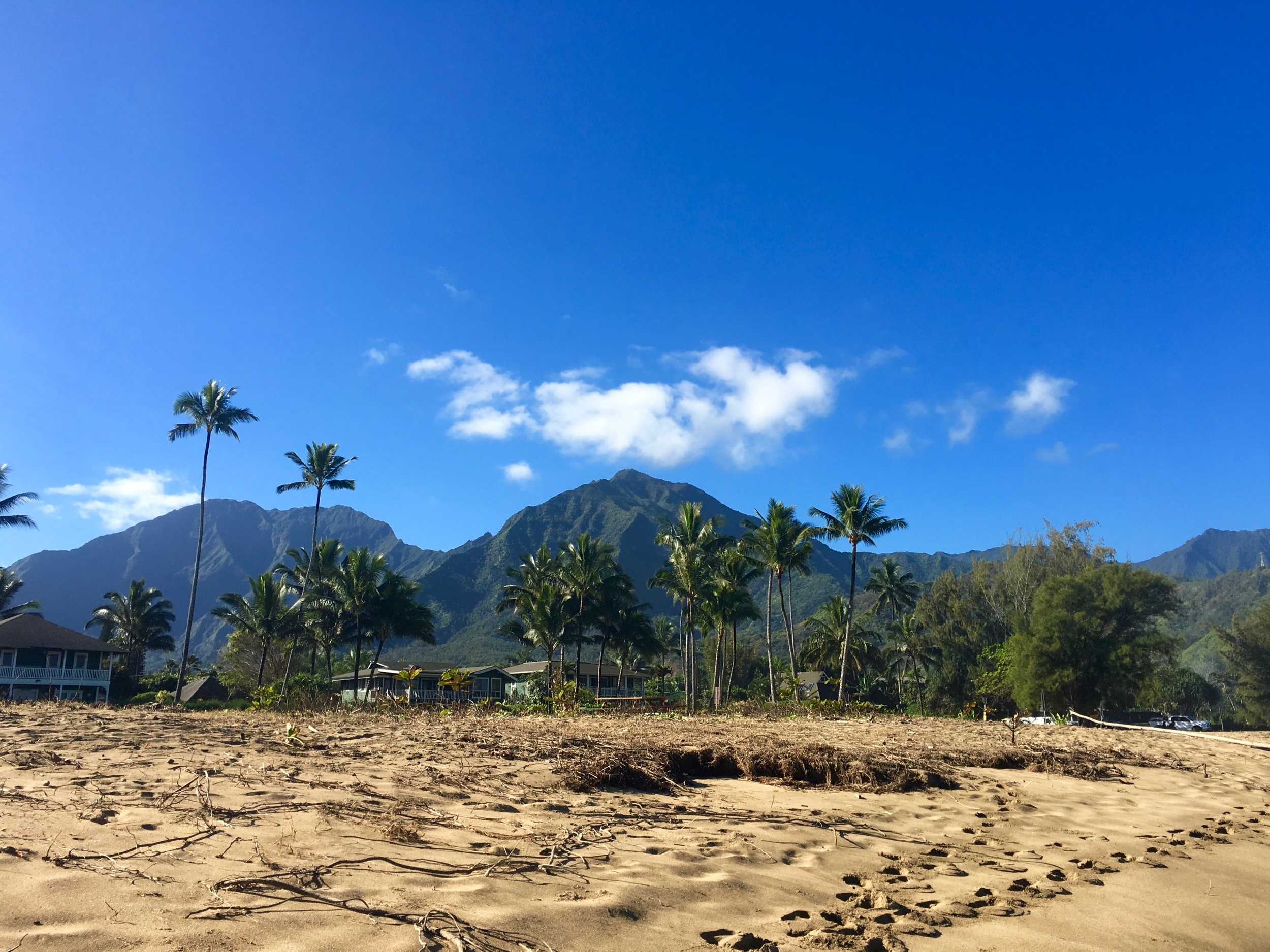 Gorgeous mountain views from Hanalei Beach.