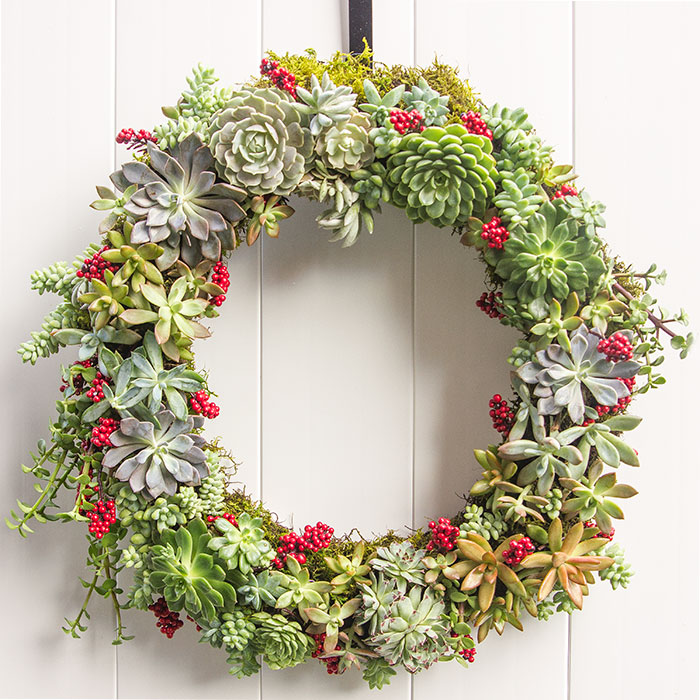 how-to-make-a-holiday-succulent-wreath-15.jpg
