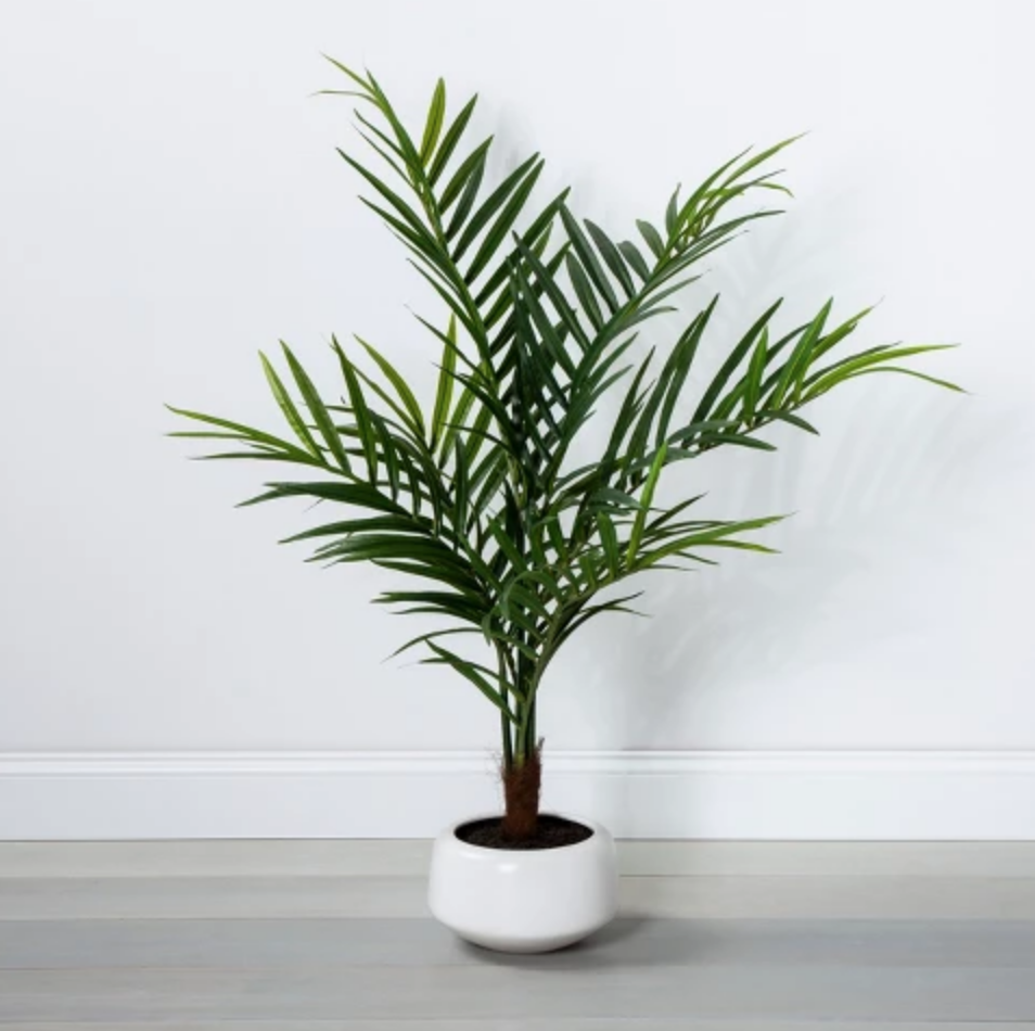 Artificial Palm in Pot - $79.99