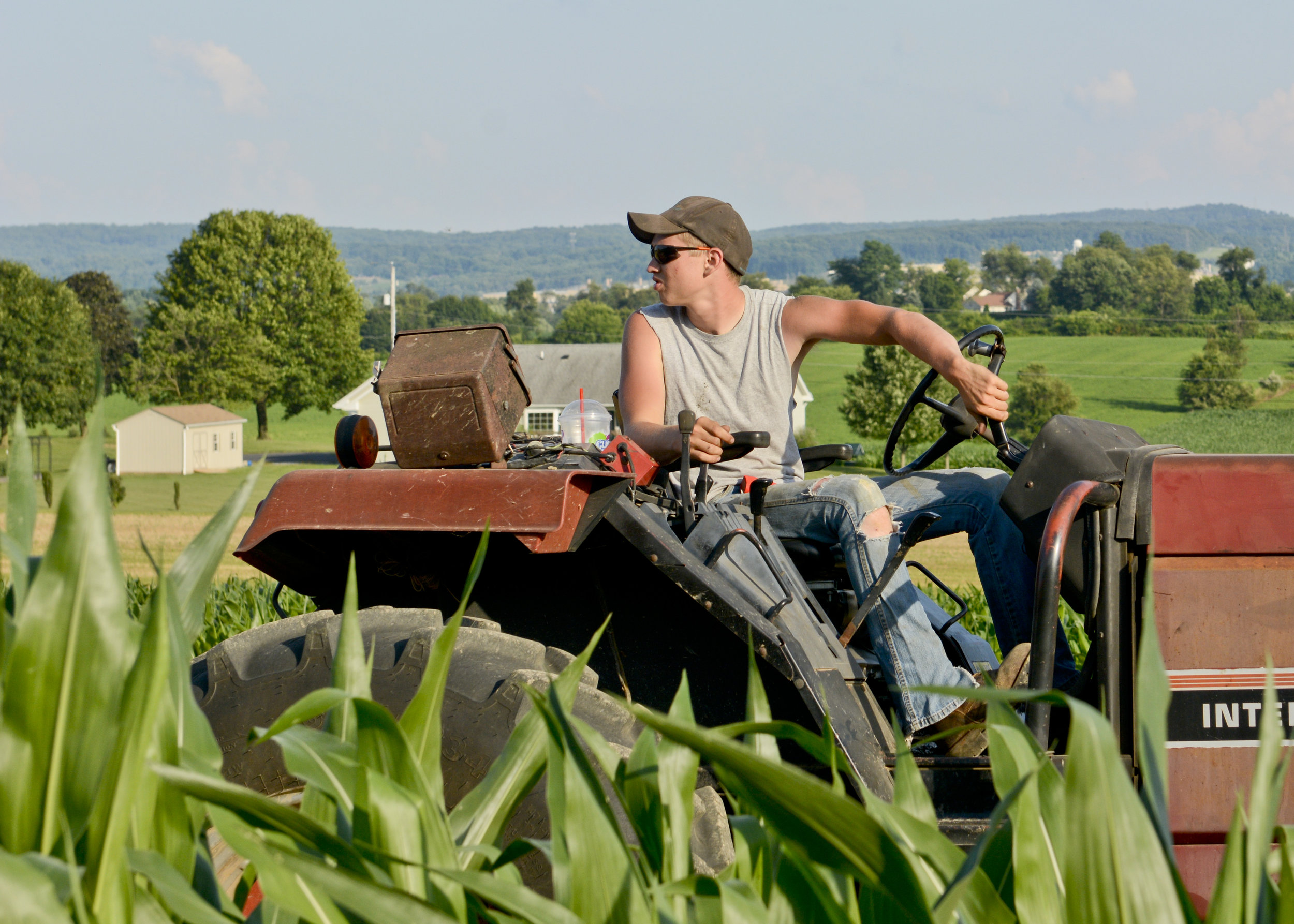 Samuel Angstadt, 19, went to work on his parents' farm in Richmond Township after graduating from Fleetwood High School. He never seriously considered anything else, he says.