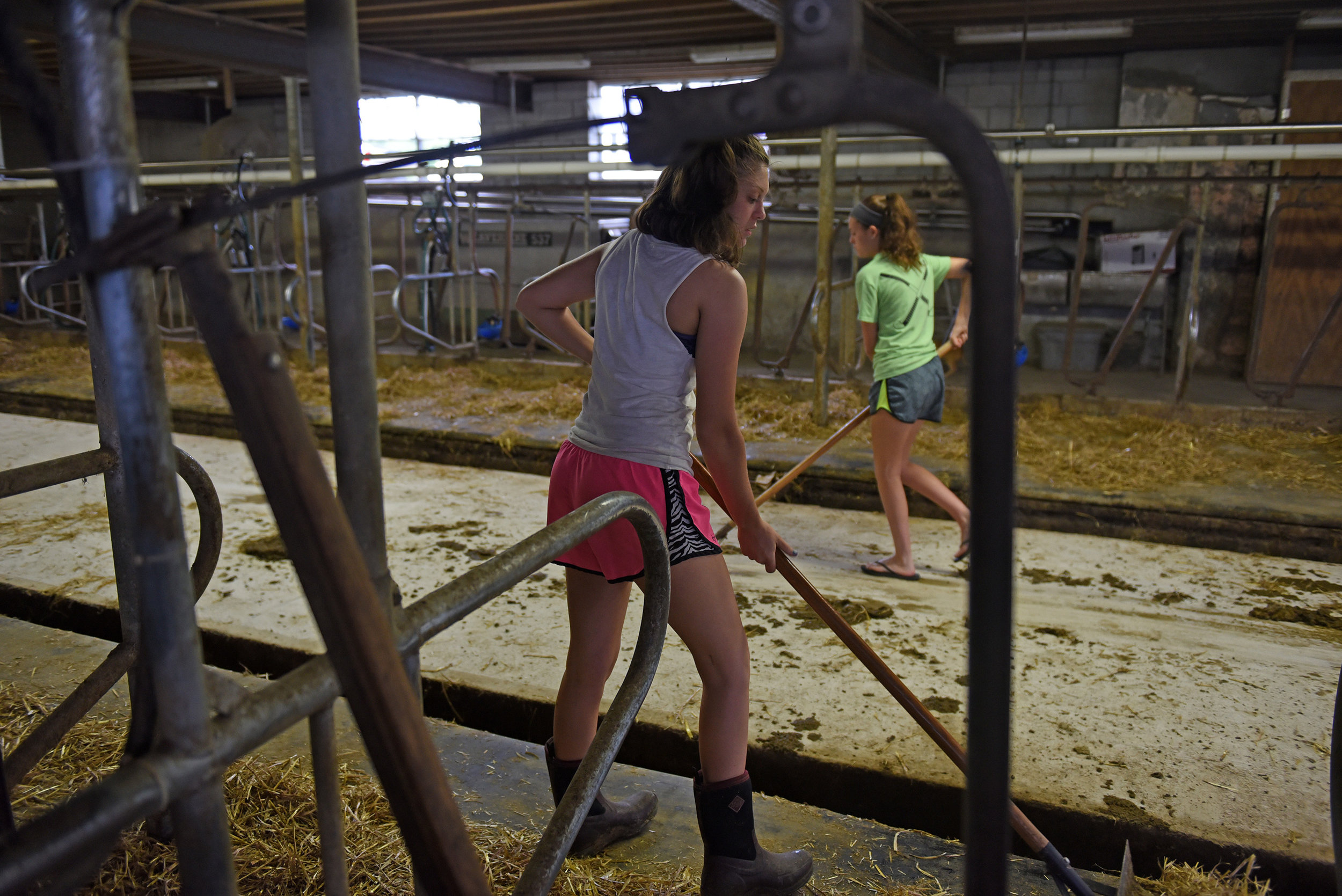 Morgan (front) and Megan Krick sweep up in between one set of cows getting milked and the second coming in for milking at the Krick Family Farm in Hamburg.