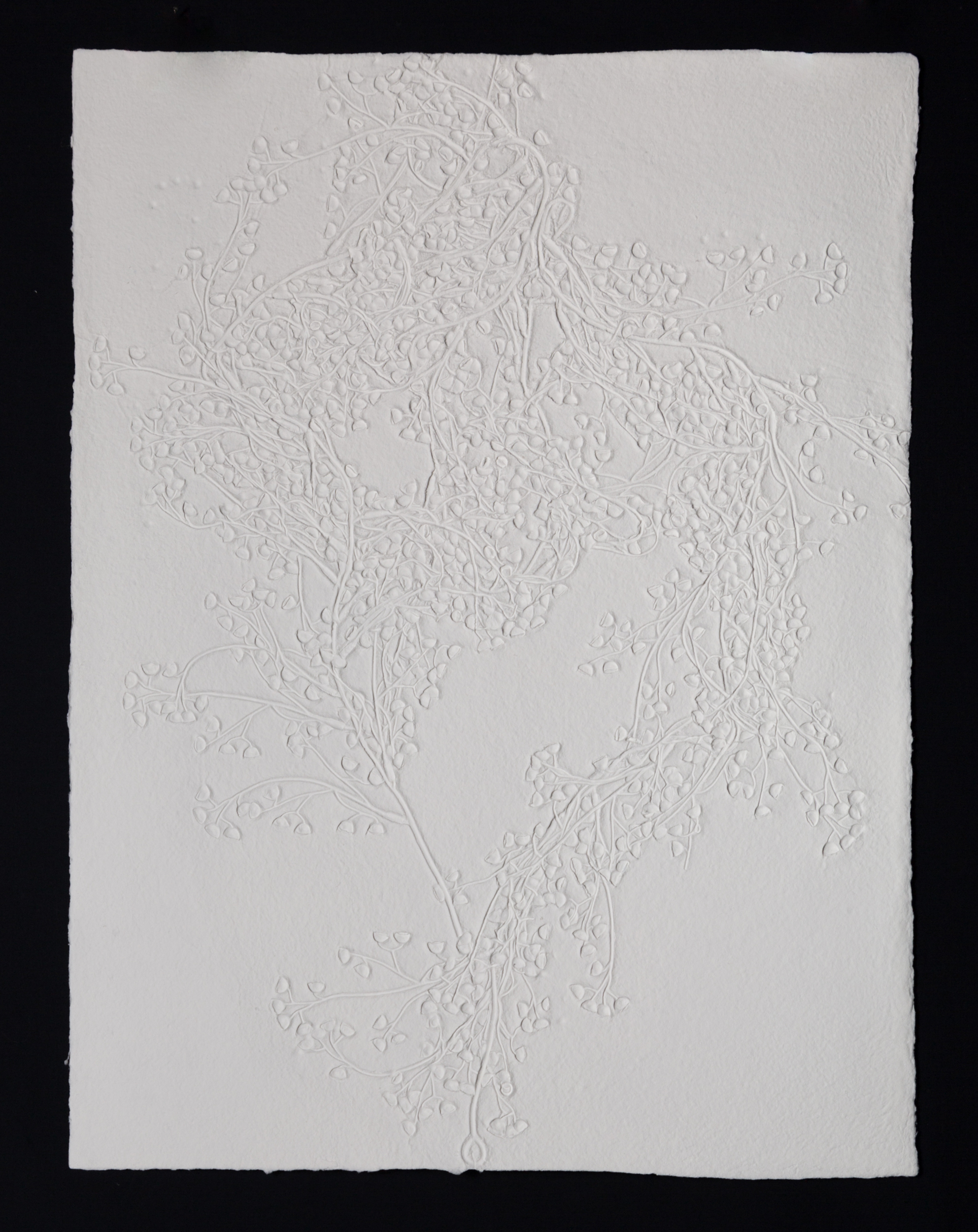 "Spores , 2017, cast cotton paper, 30"" x 22"""