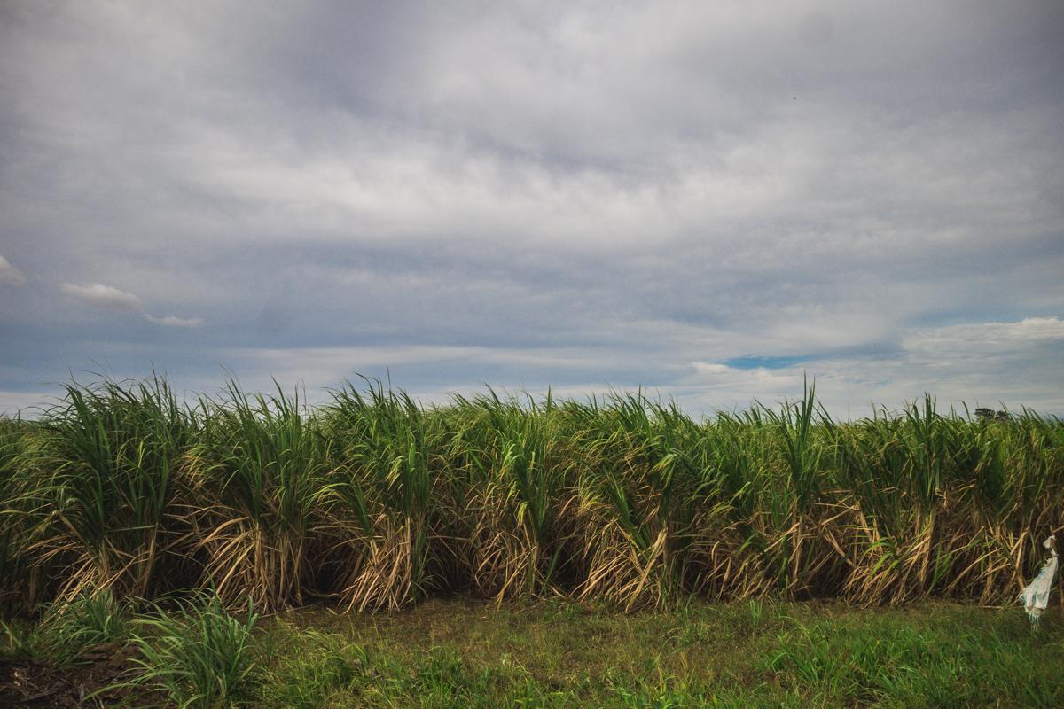 Liberia Costa Rica by Atif Ateeq-5