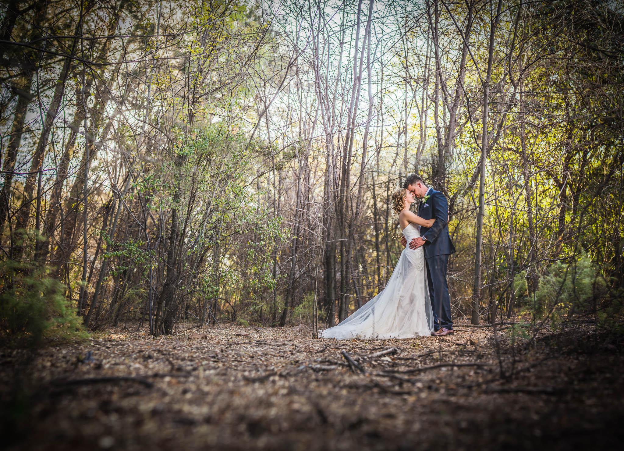 stephen and cloe wedding rosemary hill