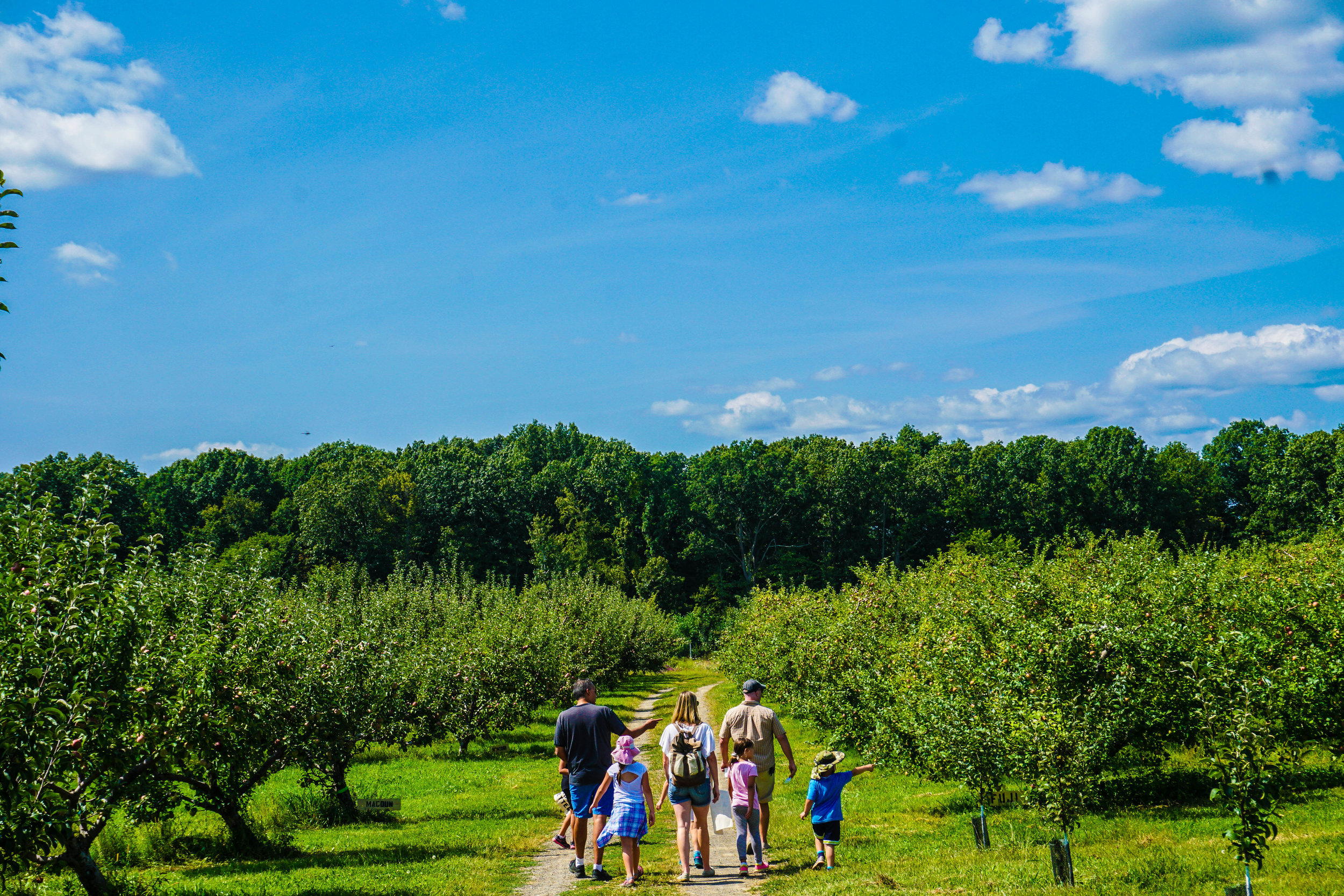 2017_08_28_BCH_New_Paltz_Orchard_021.jpg