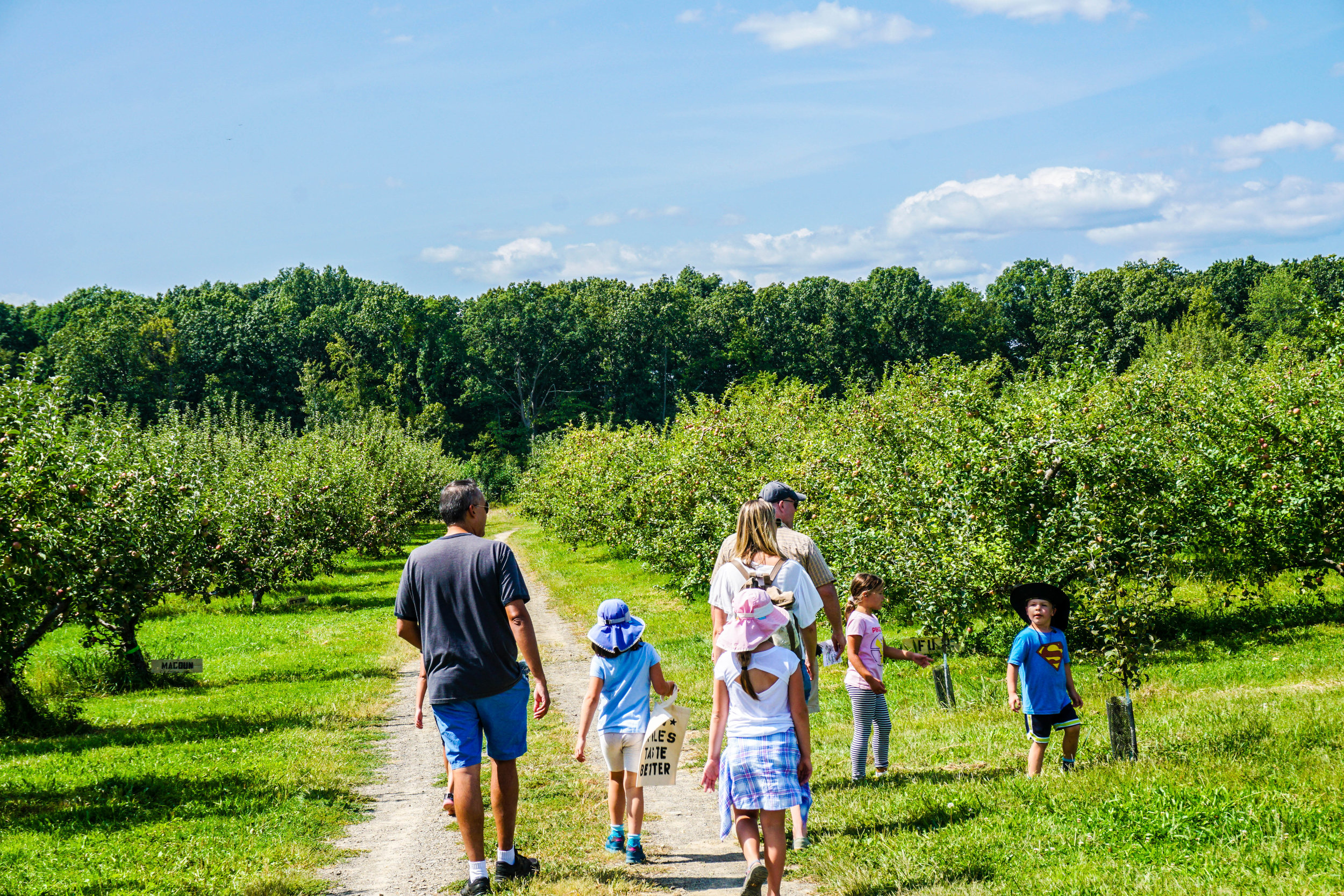 2017_08_28_BCH_New_Paltz_Orchard_020.jpg