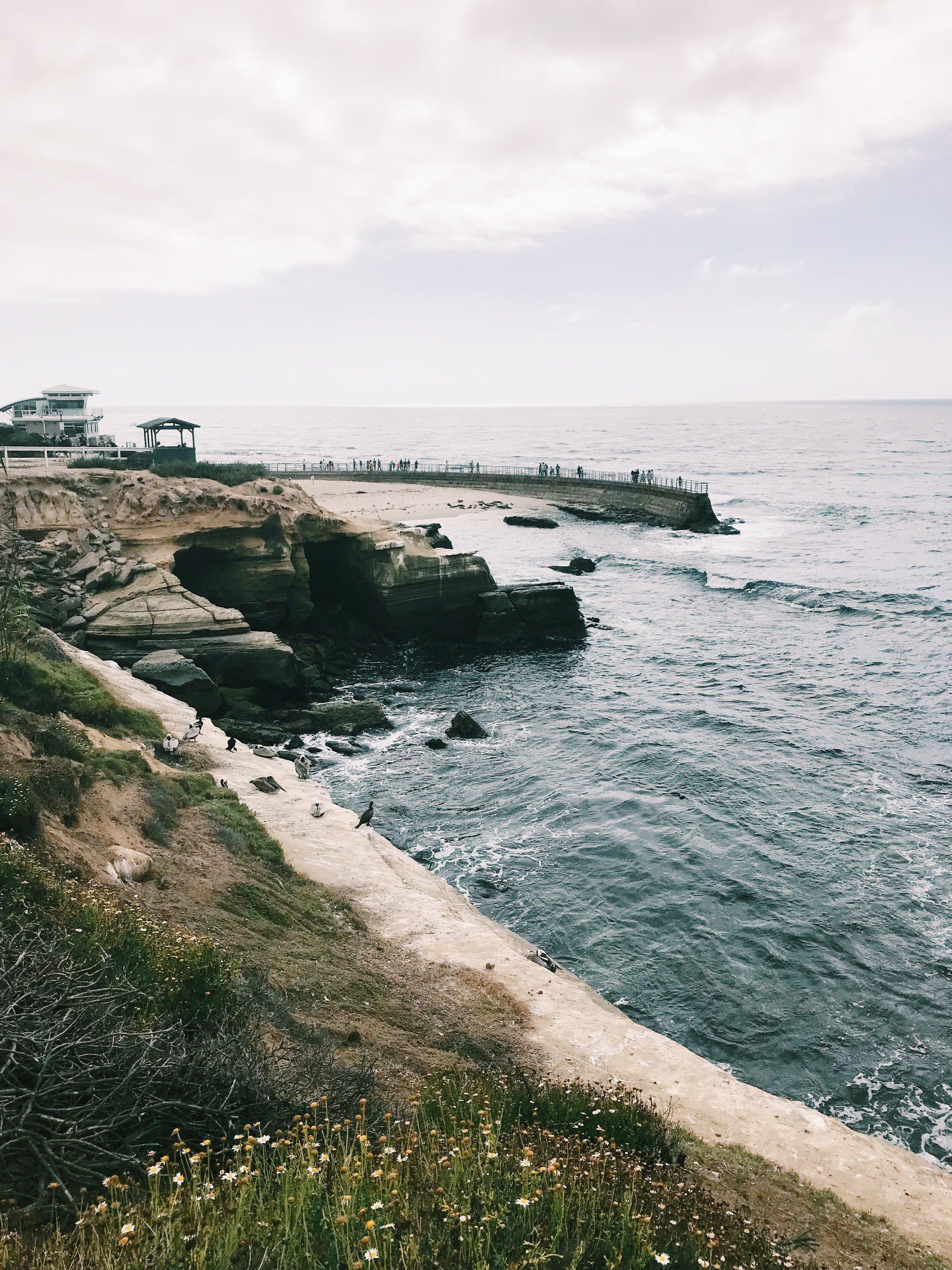 The gorgeous coast of San Diego.