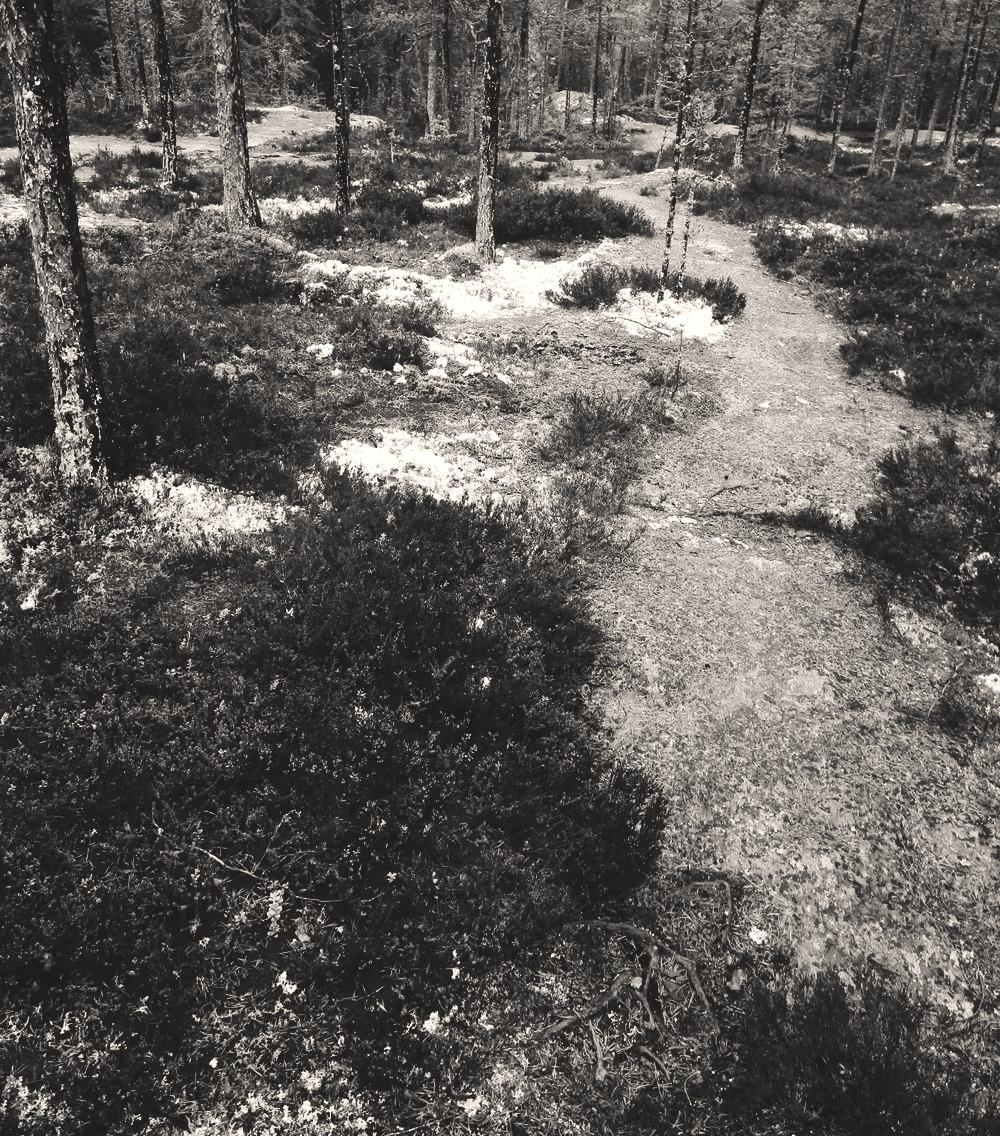 RÁNDOTTIR Forsa - svartvit.jpg