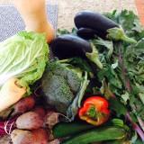 veggies farmers market
