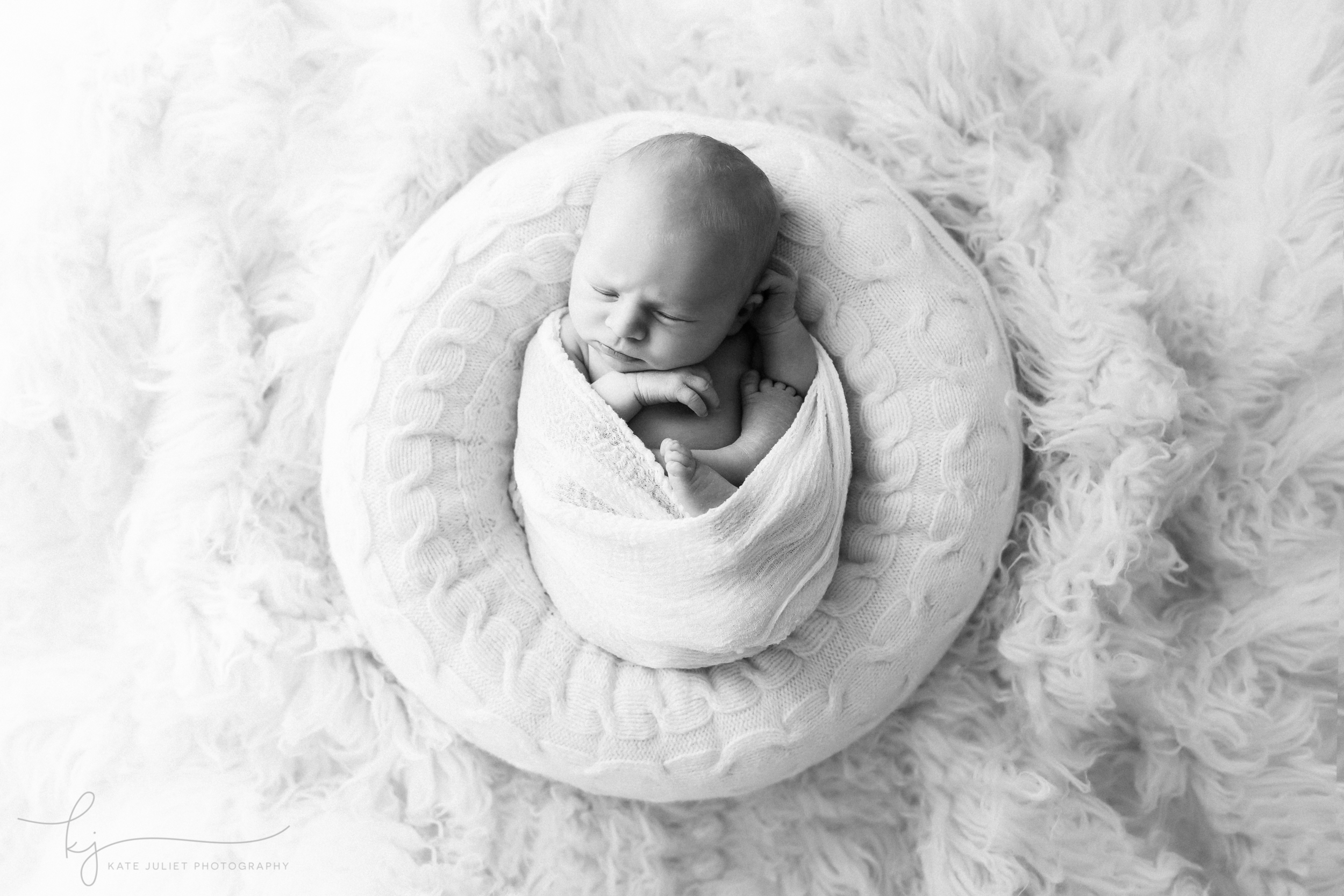 washington dc baby boy photographer