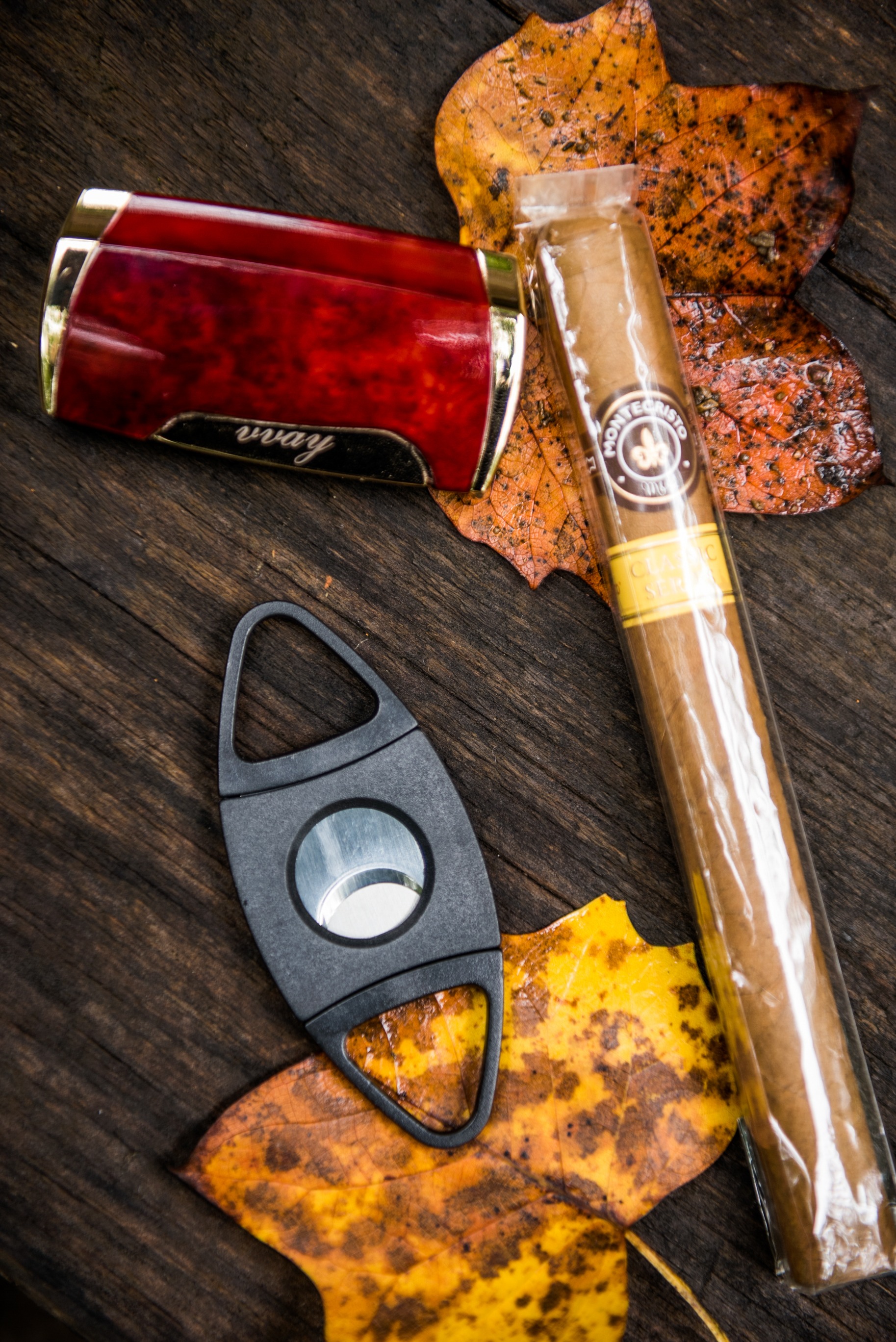 celebratory wedding cigars and fall leaves