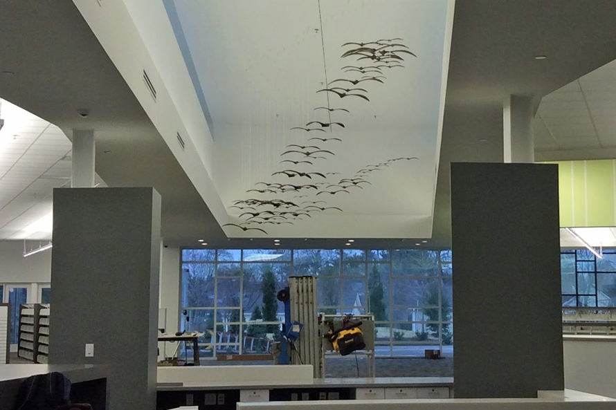Birds3-890x593.jpg