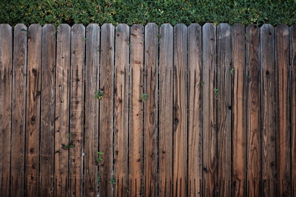 pexels-photo-113726.jpg