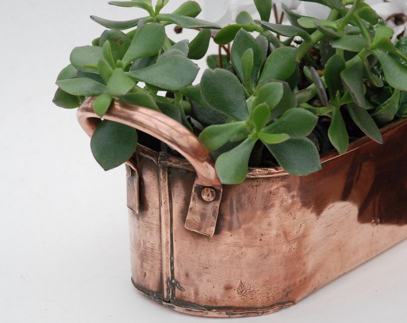 Vintage Copper Planter Jardiniere with handles - Country style decor - French antique copperware_Etsy FrenchTouchBoutique.JPG