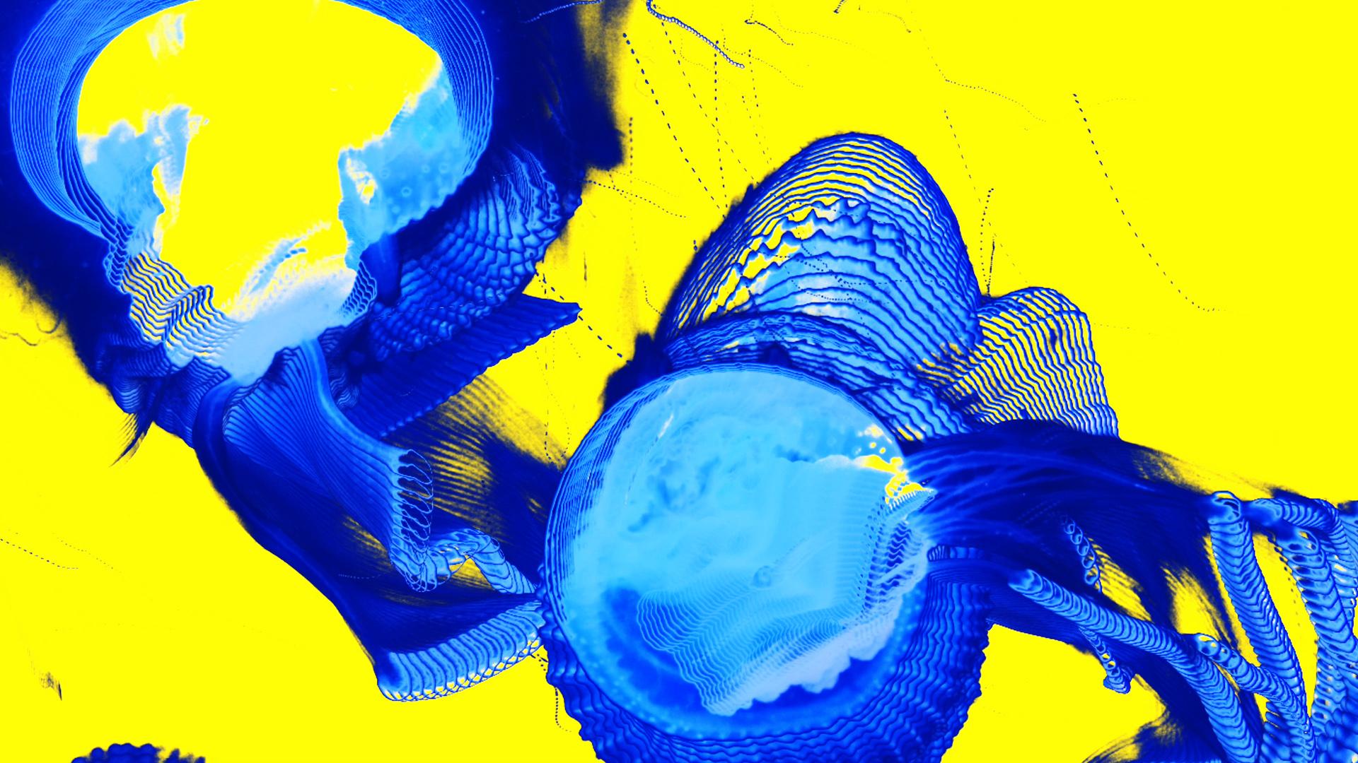 Nat Urazmetova - Submergence Live AV 03.jpg