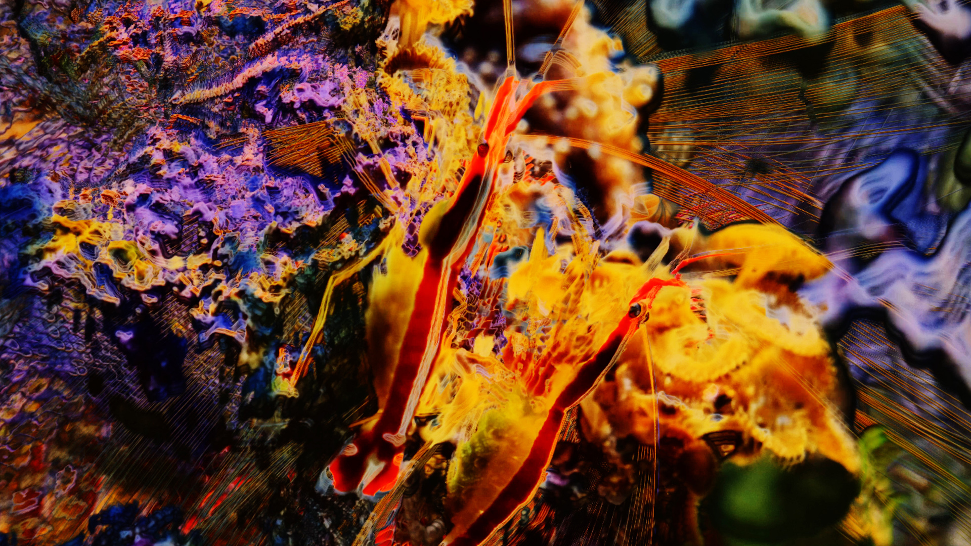 Nat Urazmetova - Submergence Live AV 07.jpg
