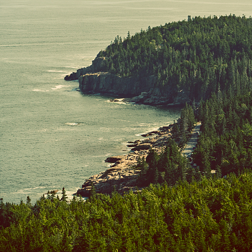MAINE_cover_cliff_pines.jpg