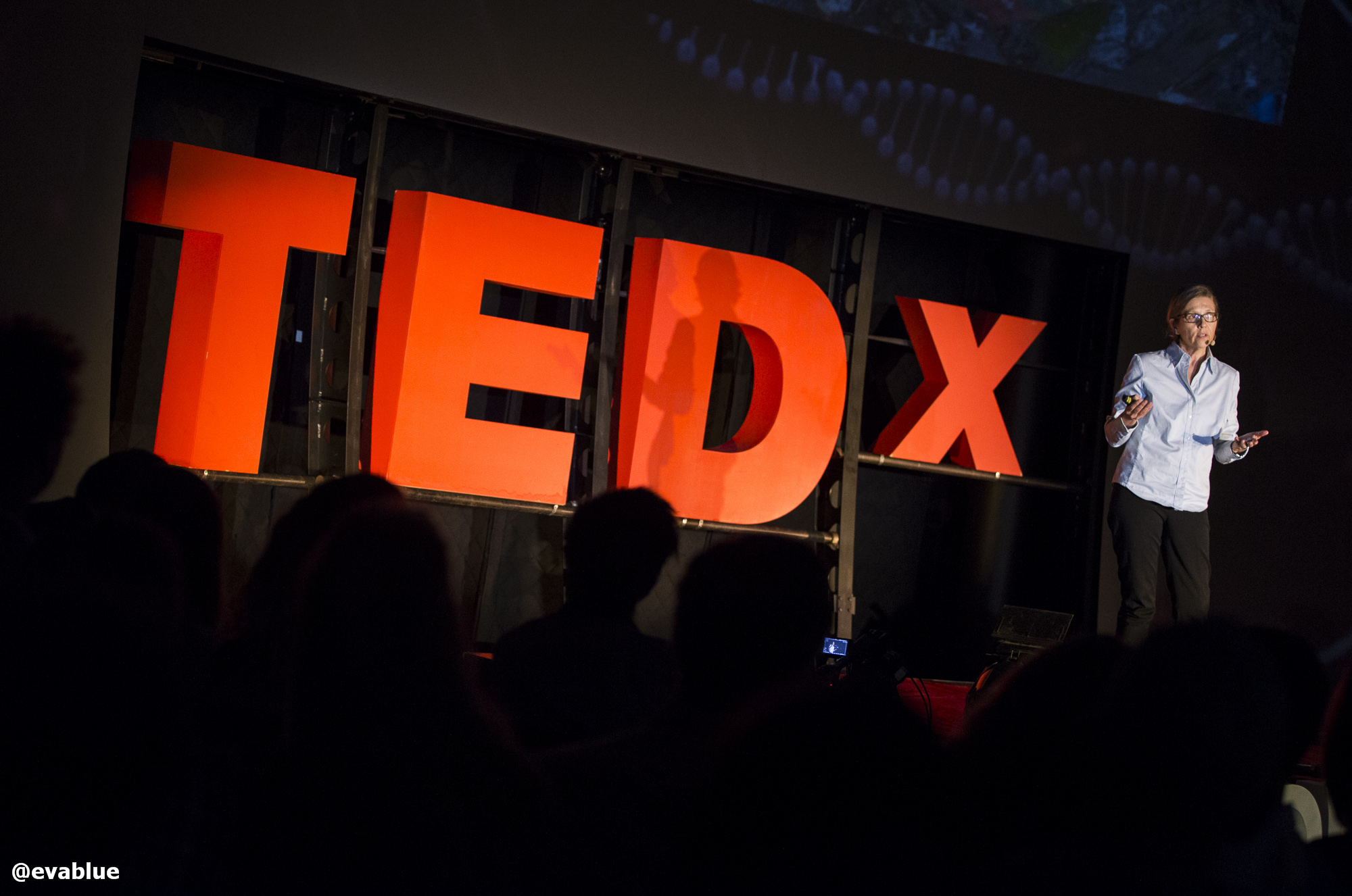 Diane Leclair Bisson at Tedx Montreal in 2014