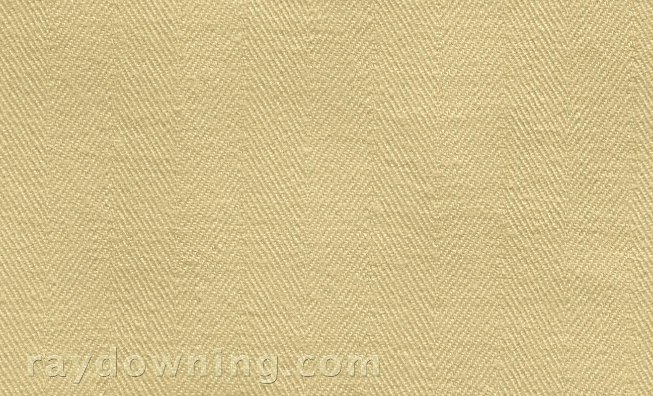 Shroud-of-Turin-weave-Ray-Downing.jpg
