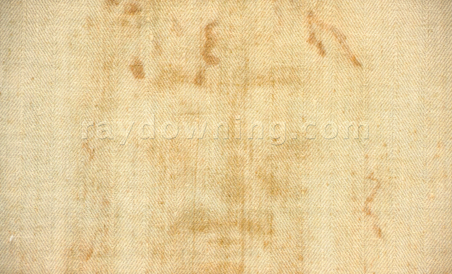 Shroud of Turin fabric face detail