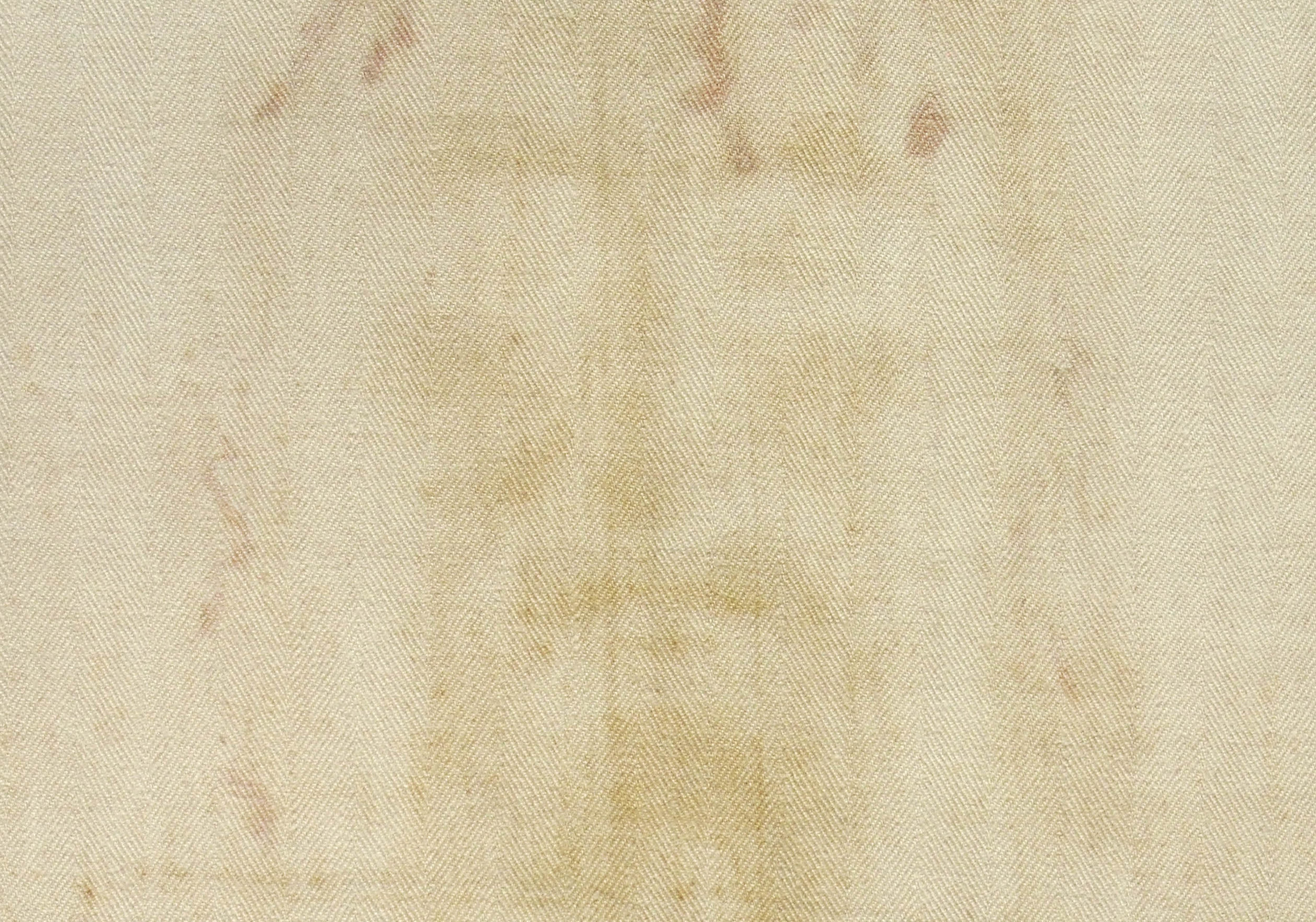 Shroud of Turin Blood Sweat Analysis