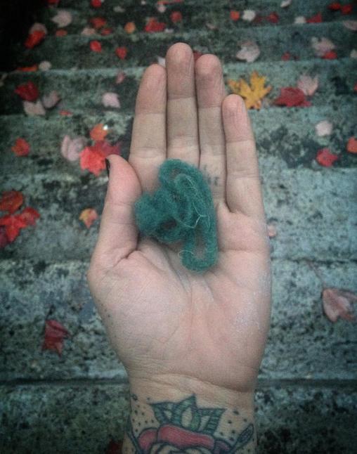 My wool sample!