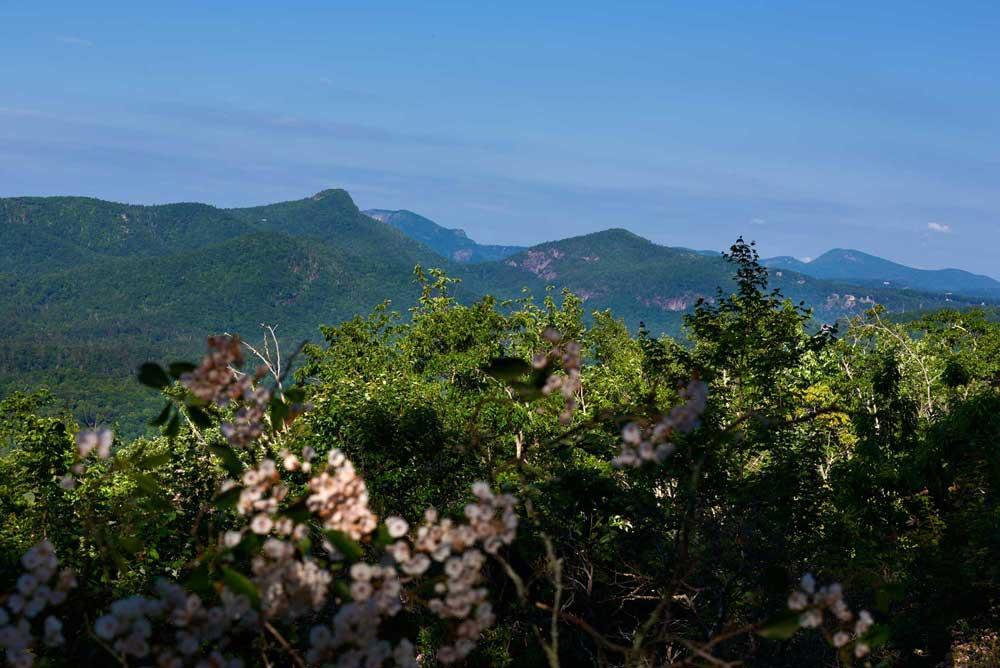 MountainLifestyle.jpg