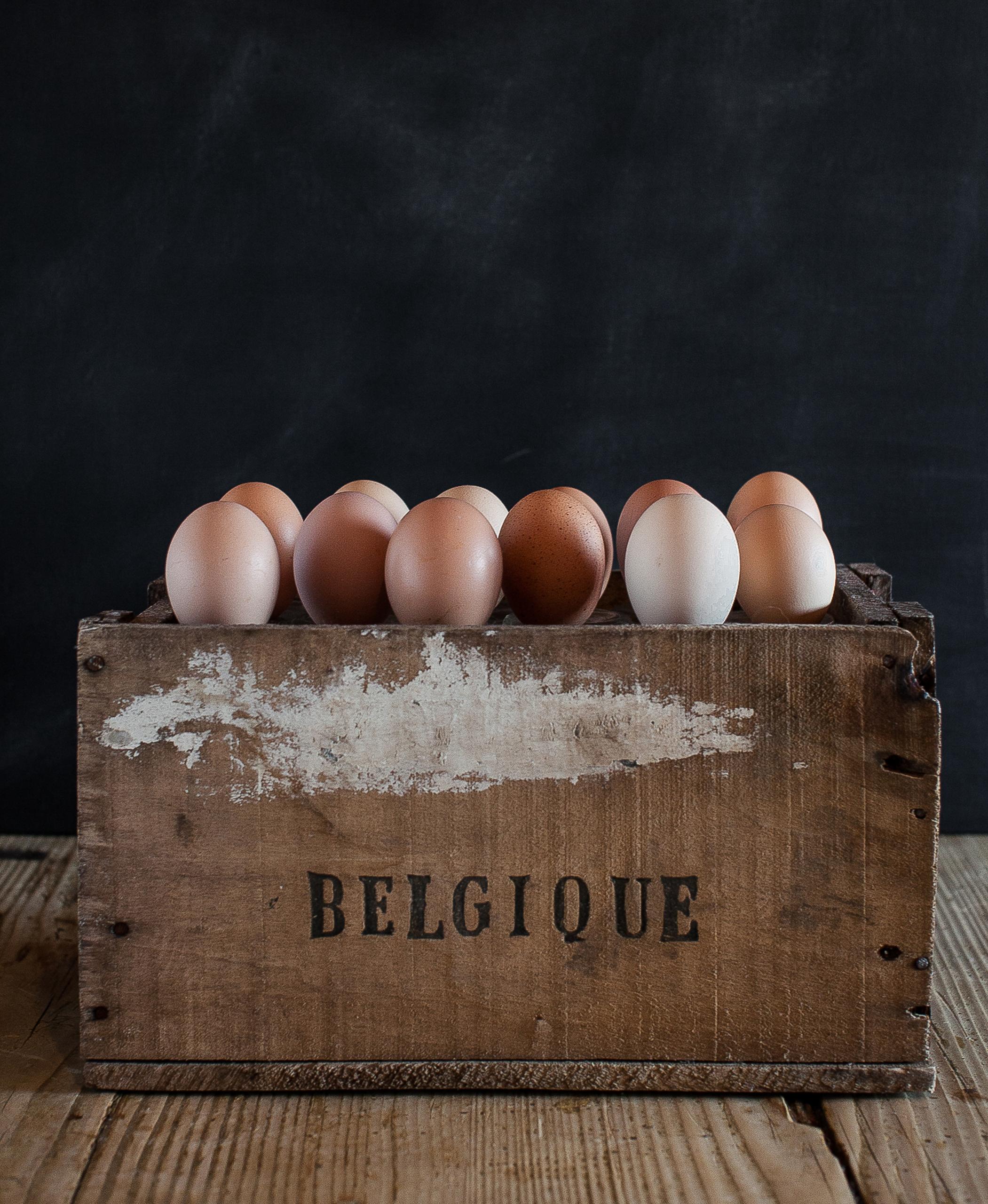 Eggs (black)-1.jpg