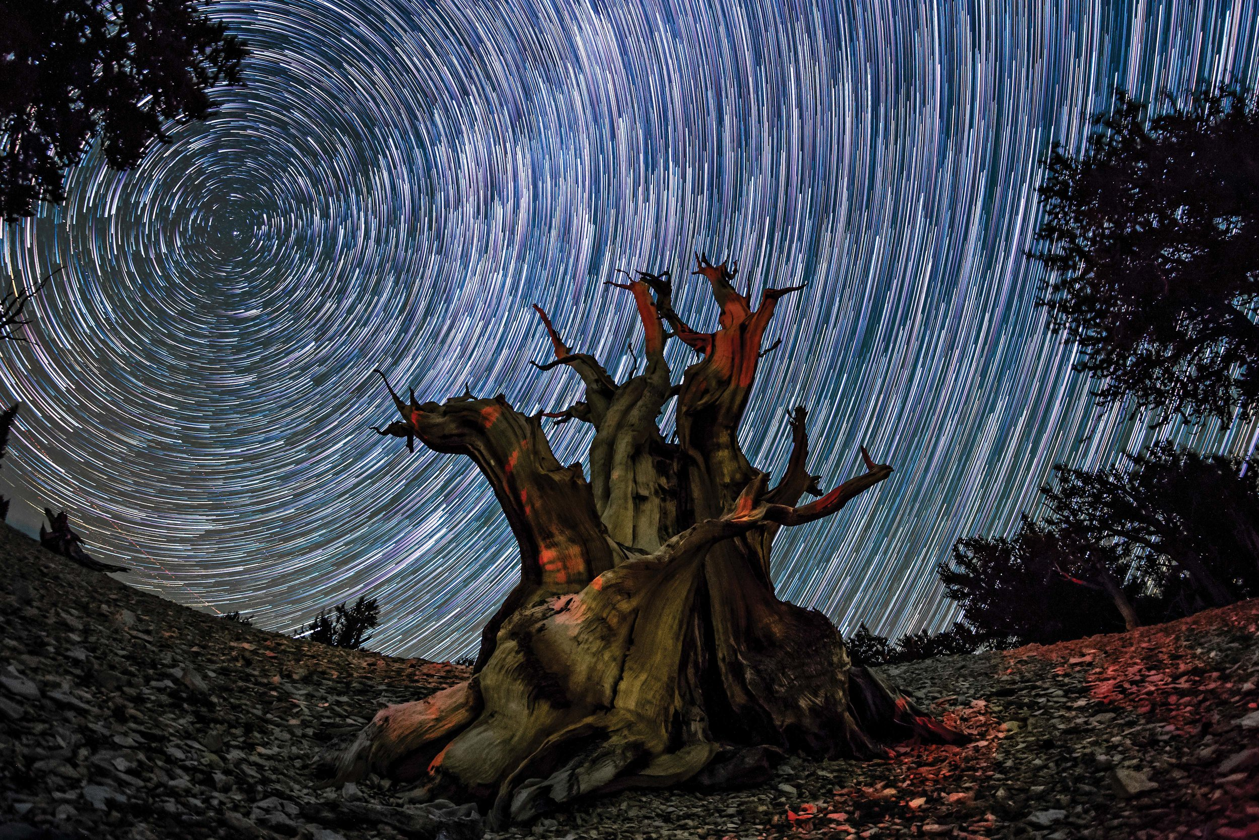 This time-lapse project is exploring the best night skies in North America - Lonely Planet Travel News. Article by James Gabriel Martin. Photographs by Skyglow