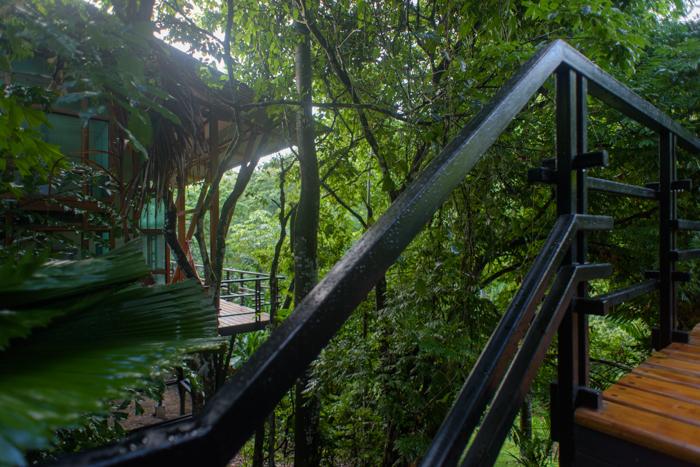 Modern luxury accommodations yoga retreat costa rica