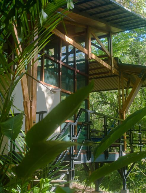 Zen Modern Accommodations.