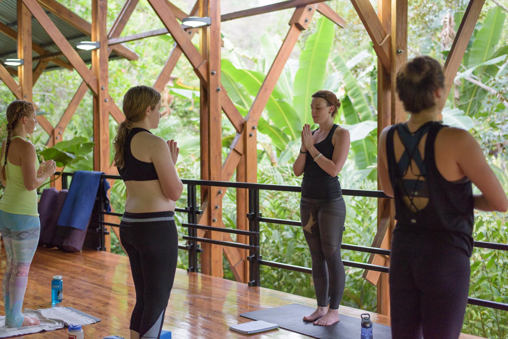Yoga Instructor Training Program Costa Rica