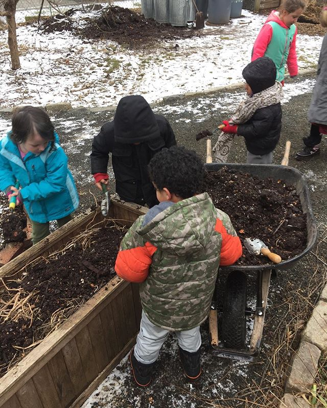 Last Friday @alamandercamp came to garden with us. Still cold, but we improvised a greenhouse for some seed balls that they made and were already sprouting.  Big shout out to our Compost team, the compost pile that was ready to use was huge and kiddos were so excited with all the worms #kidsgardening #teachnatureconnection