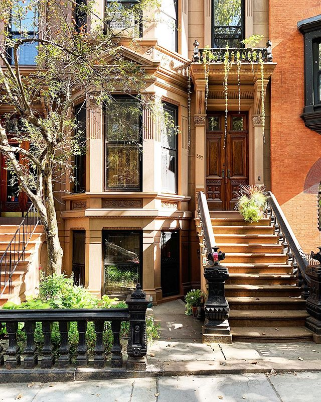 Lush mornings and #verdant #botanicals in picturesque brownstone #parkslopebrooklyn