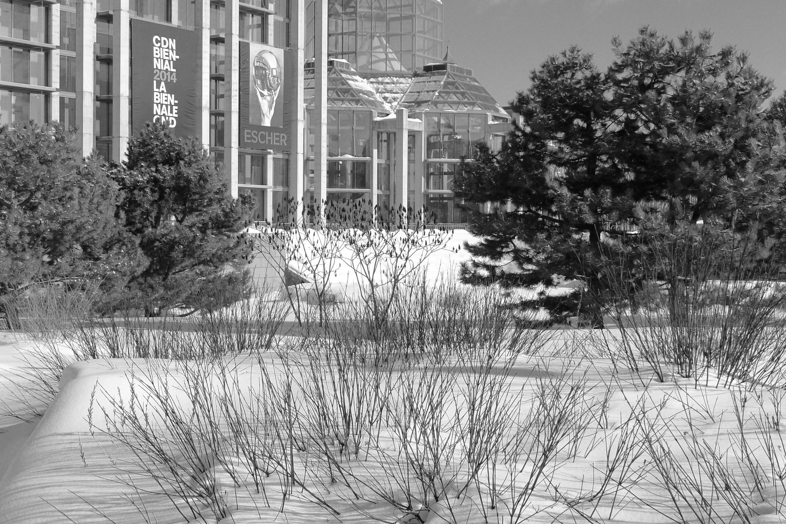 Taiga garden at the National Gallery, Ottawa